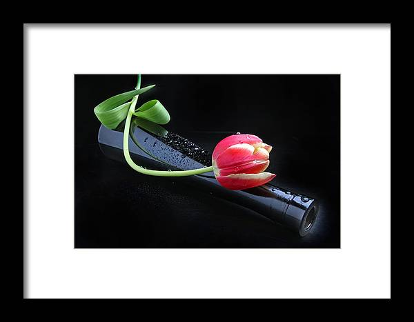Tulip Framed Print featuring the photograph Boheme by Manfred Lutzius