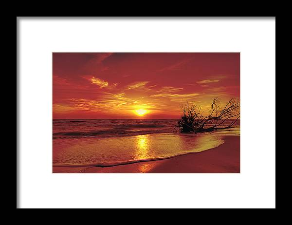 Artistic Framed Print featuring the photograph Evening Beach by Gouzel -