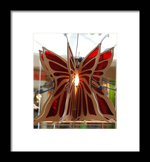 Butterfly Framed Print featuring the photograph Hanging Butterfly by Rob Hans