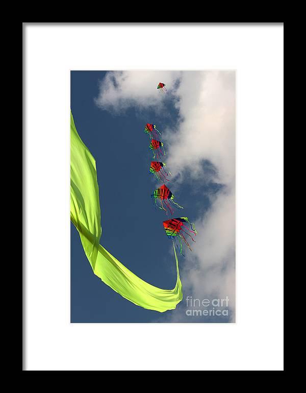 Kite Framed Print featuring the photograph High Hopes by Angel Ciesniarska