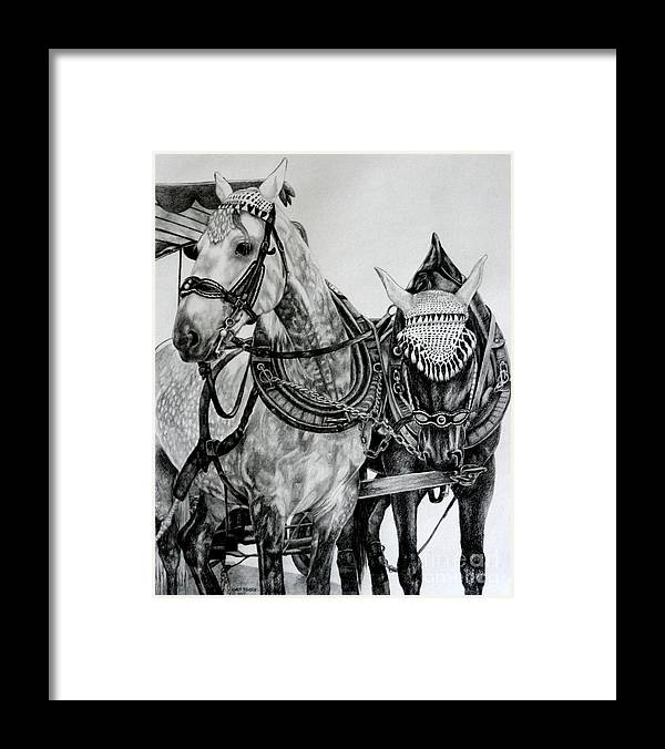 Horse Pencil Black White Germany Rothenburg Framed Print featuring the drawing 2 Horses Of Rothenburg 2000usd by Karen Bowden