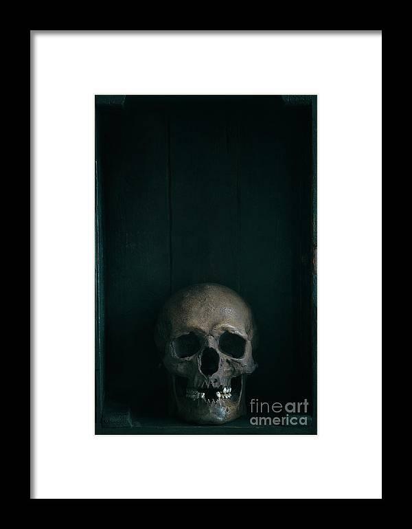 Skull Framed Print featuring the photograph Human Skull by Lee Avison