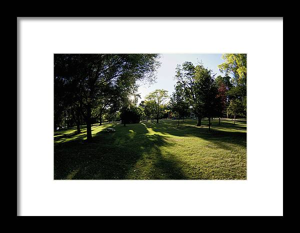 Stratford Park Tree Trees Shadow Shadows Long Framed Print featuring the photograph Long Shadows by The Sangsters