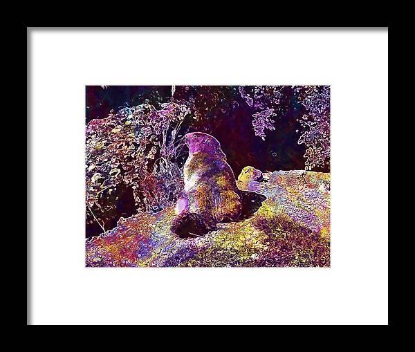 Mountain Framed Print featuring the digital art Mountain Marmot Wildlife Animals by PixBreak Art
