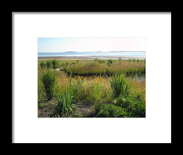 Untouched Photo Framed Print featuring the photograph Nelson Beach by Valerie Bruno