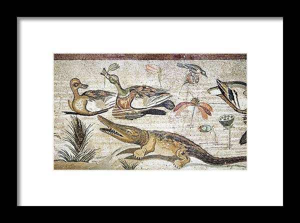 Animal Framed Print featuring the photograph Nile Flora And Fauna, Roman Mosaic by Sheila Terry
