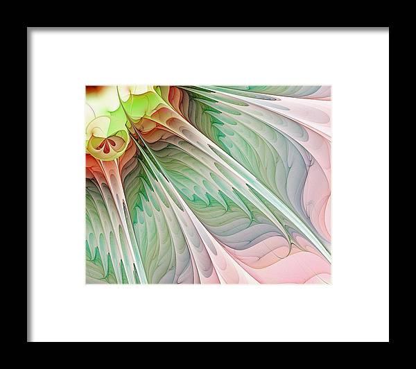 Digital Art Framed Print featuring the digital art Petals by Amanda Moore