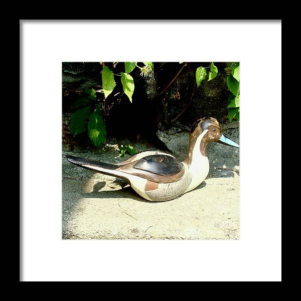 Birds Framed Print featuring the sculpture Pintail by Bruce Peterson