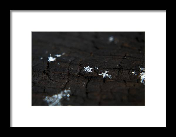 Flake Framed Print featuring the photograph Snowflake by Jolene Smith