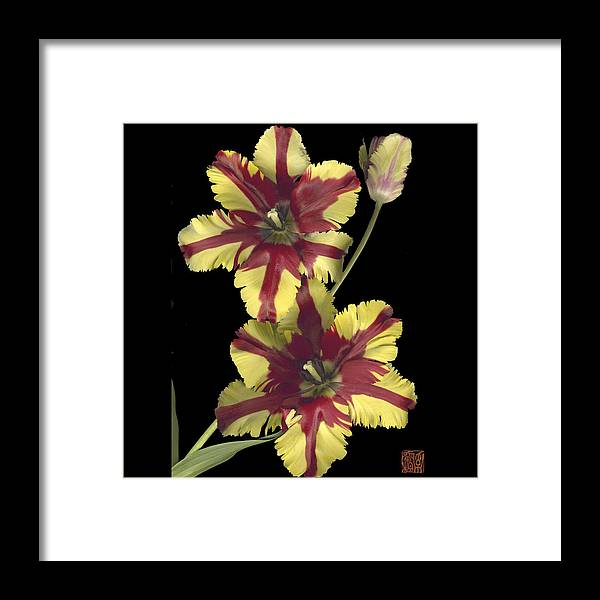 Flower Framed Print featuring the photograph Tulip by Lloyd Liebes