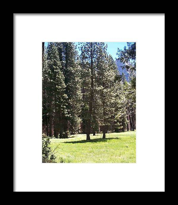 Landscape Framed Print featuring the photograph Yosemite Valley Floor by Edward Wolverton