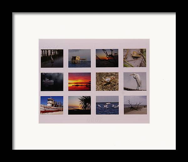 Florida Framed Print featuring the photograph 2008 Calendar Back Of Gulf Views Edition by Debbie May