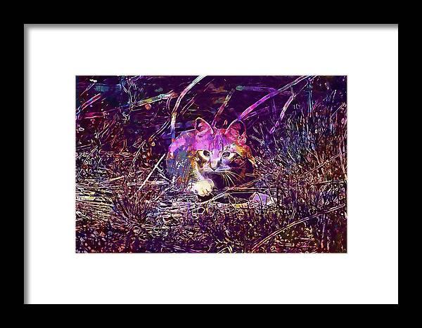 Cat Framed Print featuring the digital art Cat Kitten Mieze Red Mackerel Tabby by PixBreak Art