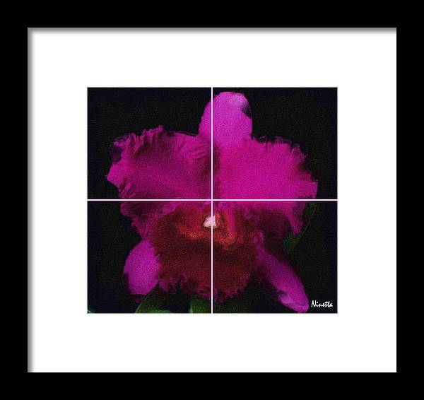 Flower In Poster Framed Print featuring the digital art 3. Escarlata  Artwork In Poster by Andrea N Hernandez