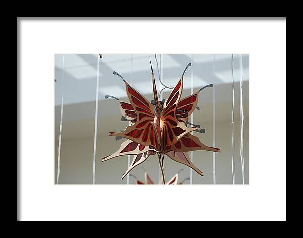 Architecture Framed Print featuring the photograph Hanging Butterfly by Rob Hans