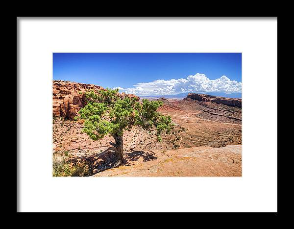 Landscape Framed Print featuring the photograph Moab by Brett Engle