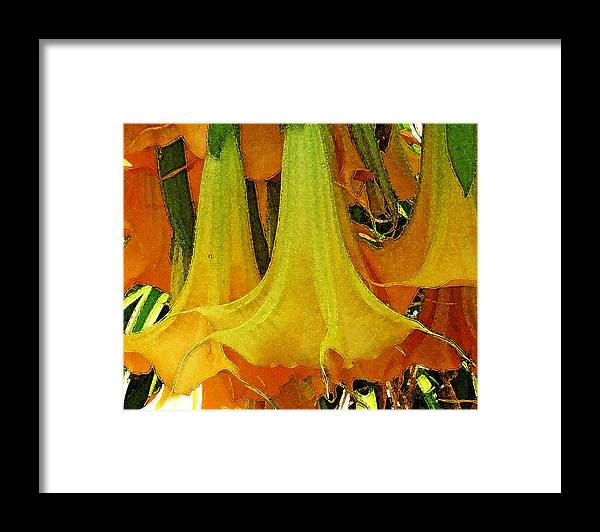 Floral Framed Print featuring the photograph Nature Series by Ginger Geftakys