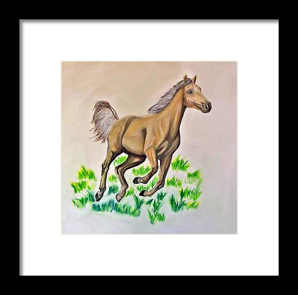 Charcoal Framed Print featuring the drawing Palomino by Crystal Suppes