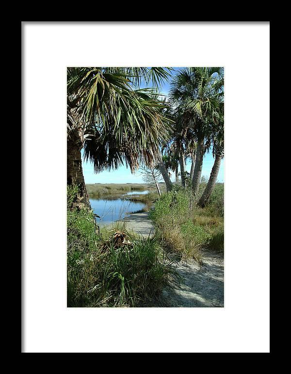 Color Photograph Framed Print featuring the photograph St Mark's Lagoon by Wayne Denmark