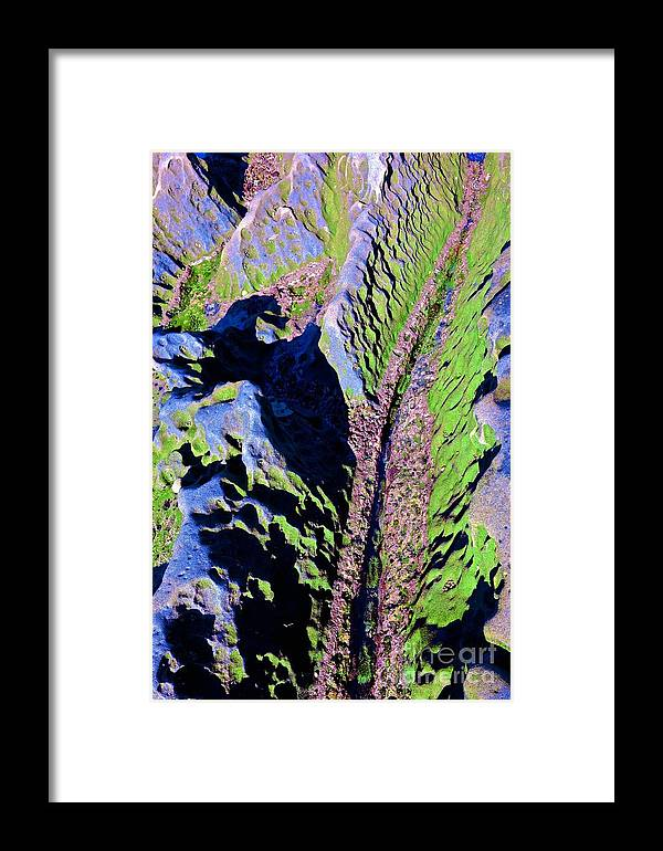 Sea Tide Pool Ocean Framed Print featuring the photograph Untitled by Cate