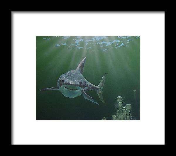 Shark Framed Print featuring the painting Untitled 3 by Philip Fleischer