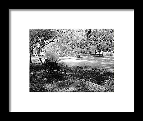 Botanic Garden Infrared Framed Print featuring the photograph Botanic Garden by Galeria Trompiz