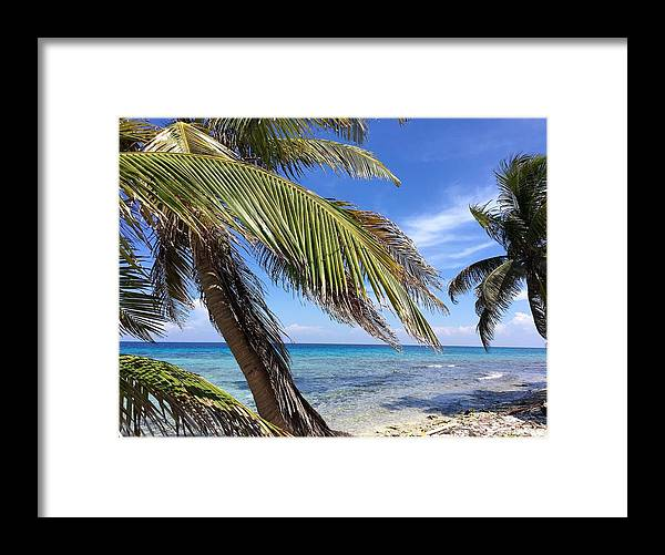 Beach Framed Print featuring the photograph Laughing Bird Caye by Julia Breheny
