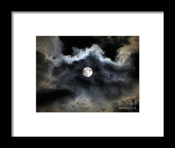 Lunar Framed Print featuring the photograph Lisas Wildlife Moons 2 by September Stone