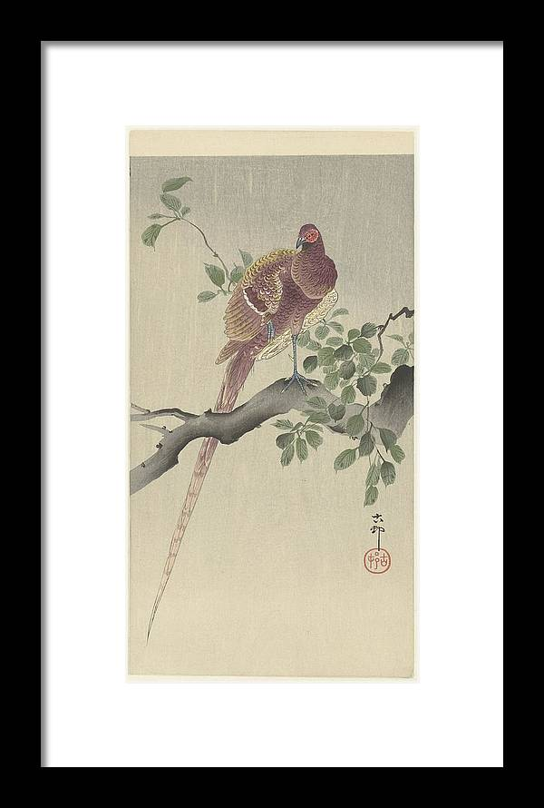 Koperfazant Framed Print featuring the painting Ohara Koson by Eastern Accent