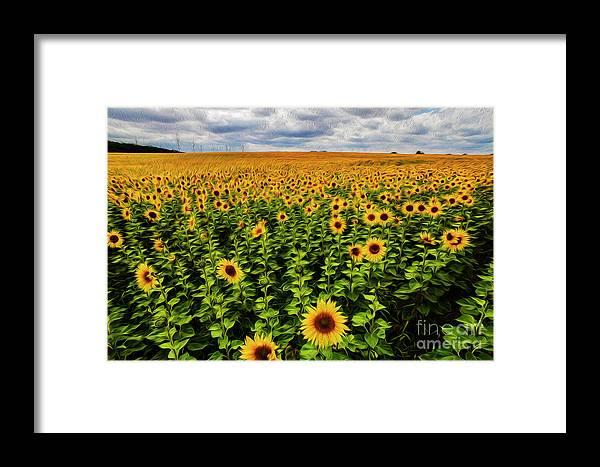 Flowers Framed Print featuring the digital art Sunflowers by Tino Lehmann
