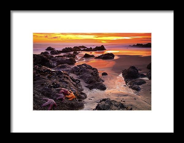 Beaches Framed Print featuring the photograph 5 Star Sunset by Greg Clure