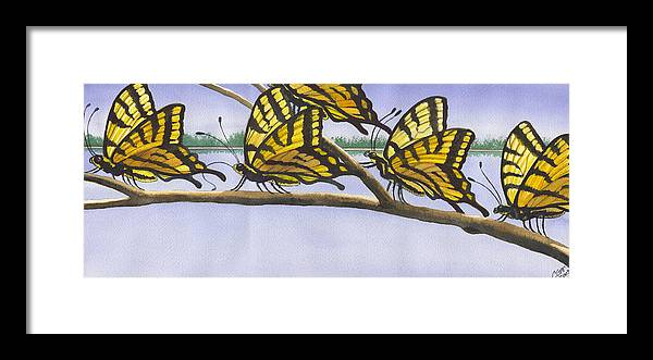 Butterfly Framed Print featuring the painting 5 Swallowtails by Catherine G McElroy