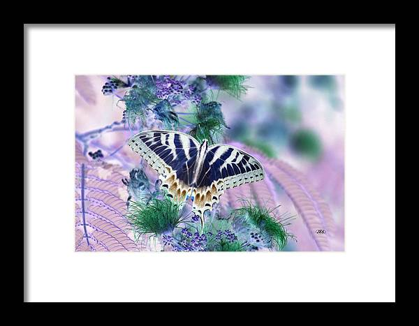 Air Framed Print featuring the photograph 5807 2 by Jim Simms
