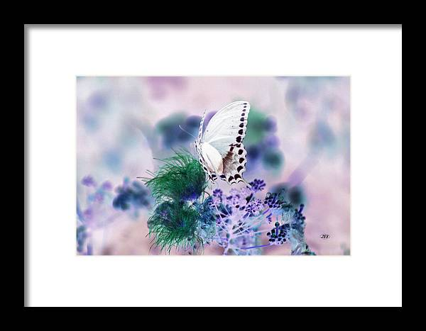 Air Framed Print featuring the photograph 5846 2 by Jim Simms
