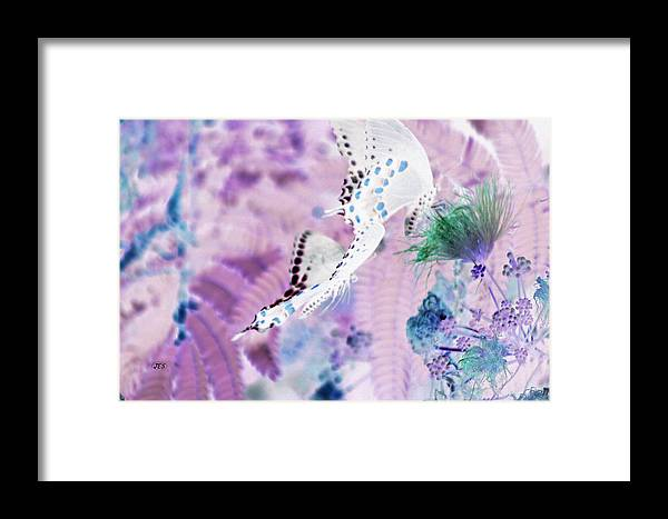 Air Framed Print featuring the photograph 5874 2 by Jim Simms