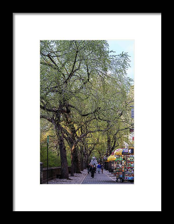 Nyc Framed Print featuring the photograph 5th Avenue by Robert J Caputo
