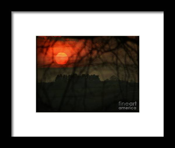 Sunset Framed Print featuring the photograph The Sunset by Angel Ciesniarska