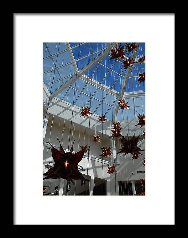 Architecture Framed Print featuring the photograph Hanging Butterflies by Rob Hans