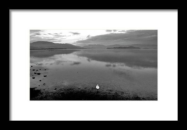 Scotland United Kingdom Uk Framed Print featuring the photograph Scotland United Kingdom Uk by Paul James Bannerman