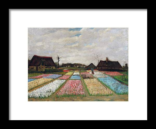 Tulips Framed Print featuring the painting Flower Beds In Holland by Vincent van Gogh