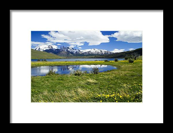 Patagonia Framed Print featuring the photograph Springtime in Torres del Paine by Michele Burgess