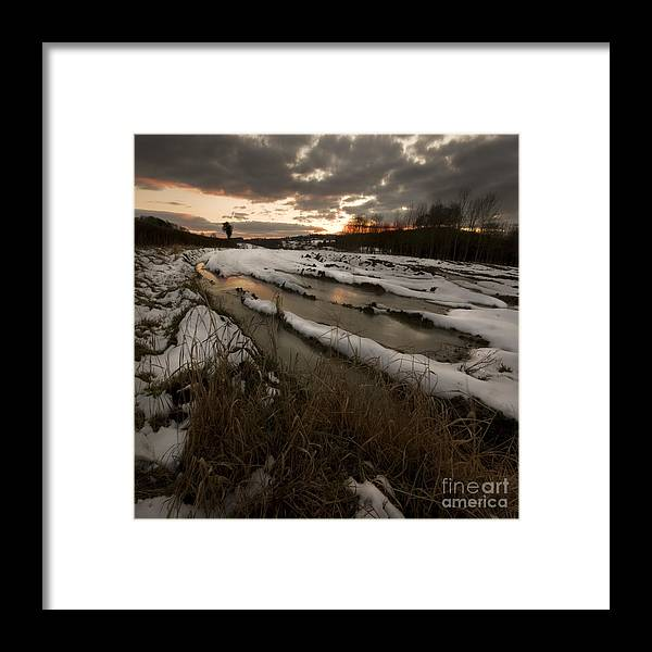 Winter Framed Print featuring the photograph The Winter Time by Angel Ciesniarska