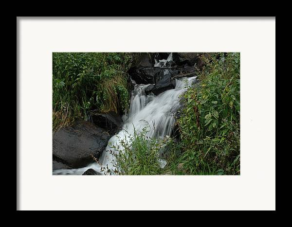 Nature Framed Print featuring the photograph Untitled by Kathy Schumann