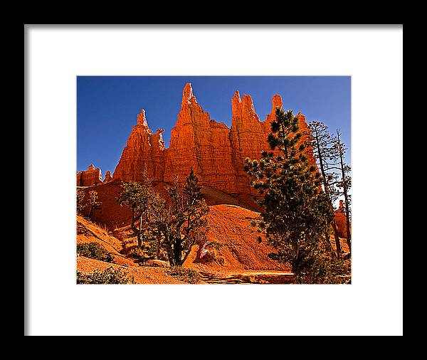 Landscape Framed Print featuring the photograph Bryce Canyon N.p. by Larry Gohl