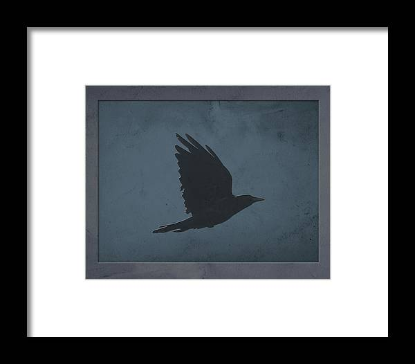 Fly+high+fly+free Framed Print featuring the photograph A Crow In Flight On Grungy Blue And Gray Background by Focus on the Photo