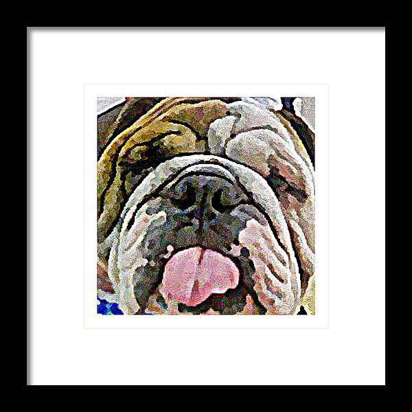 Dog Framed Print featuring the digital art A Face Only A Mother Could Love by Terry Mulligan