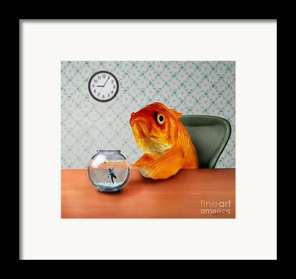 A Fish Out Of Water Framed Print featuring the mixed media A Fish Out Of Water by Carrie Jackson