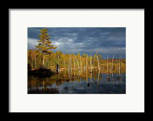Wetlands Framed Print featuring the photograph A Fleeting Sunset Moment by Linda McRae