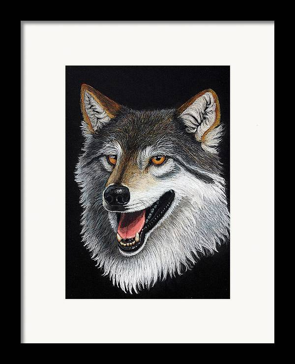Animal Framed Print featuring the mixed media A Friendly Wolf by Lorraine Foster