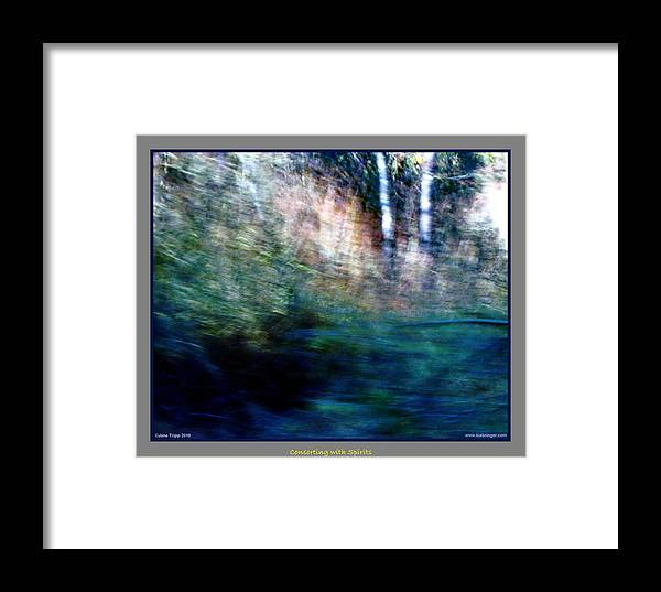 Ghost Framed Print featuring the photograph A Gathering Of Ghosts by Jane Tripp